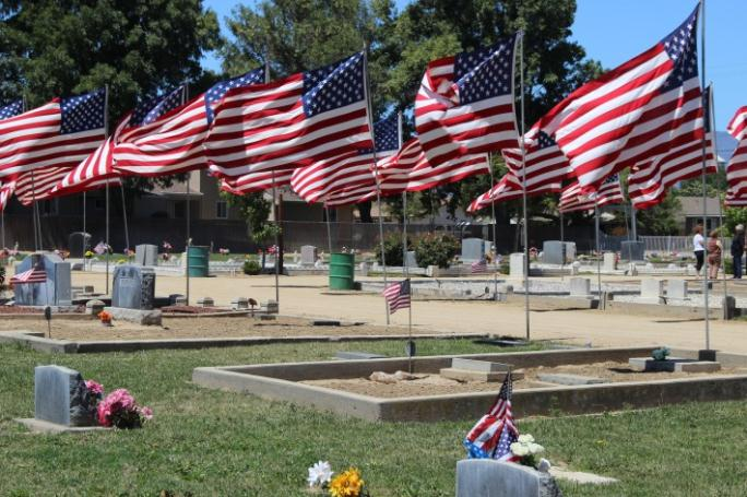 American flags waving in a cemetery.